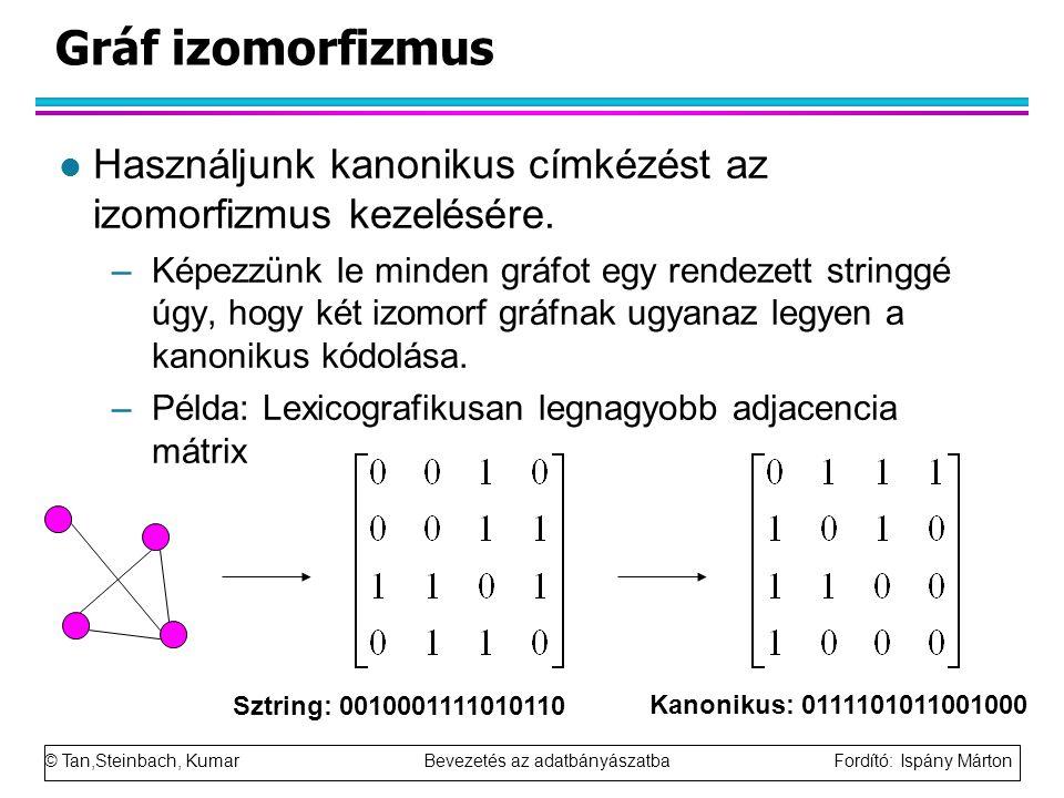 © Tan,Steinbach, Kumar Bevezetés az adatbányászatba Fordító: Ispány Márton Gráf izomorfizmus l Használjunk kanonikus címkézést az izomorfizmus kezelésére.