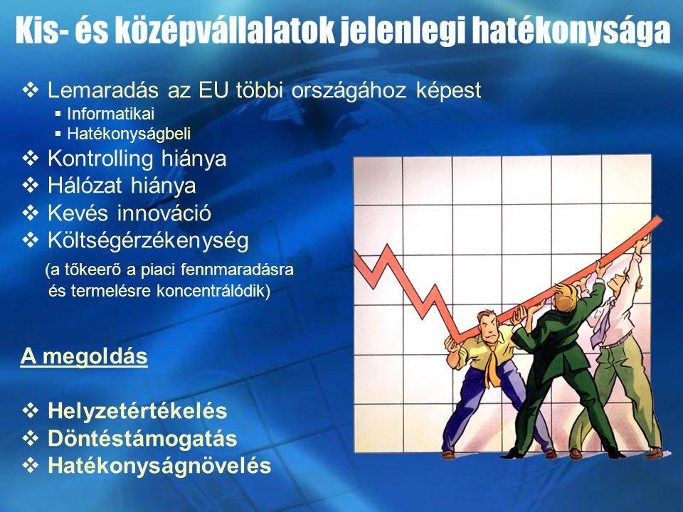 Kis- és középvállalatok jelenlegi hatékonysága  Lemaradás az EU többi országához képest  Informatikai  Hatékonyságbeli  Kontrolling hiánya  Hálózat hiánya  Kevés innováció  Költségérzékenység (a tőkeerő a piaci fennmaradásra és termelésre koncentrálódik) A megoldás  Helyzetértékelés  Döntéstámogatás  Hatékonyságnövelés