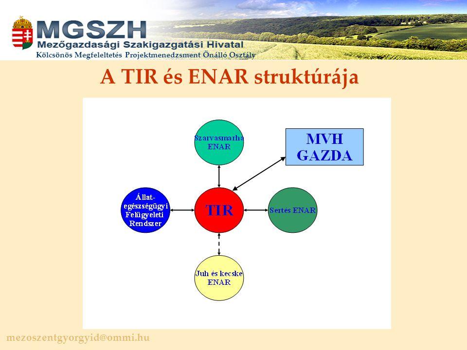 mezoszentgyorgyid@ommi.hu Kölcsönös Megfeleltetés Projektmenedzsment Önálló Osztály A TIR és ENAR struktúrája