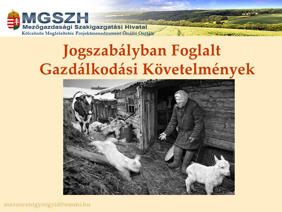 mezoszentgyorgyid@ommi.hu Kölcsönös Megfeleltetés Projektmenedzsment Önálló Osztály Jogszabályban Foglalt Gazdálkodási Követelmények