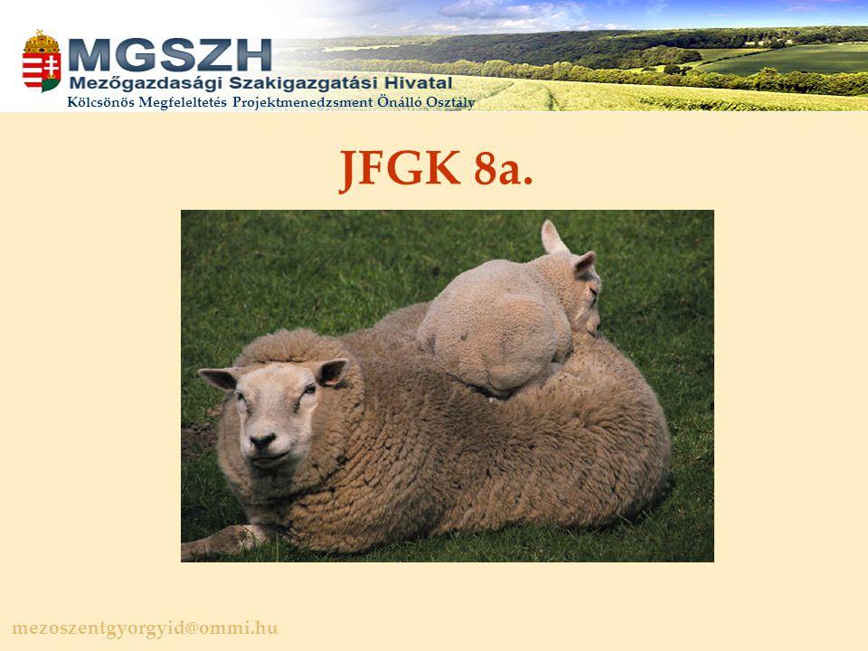 mezoszentgyorgyid@ommi.hu Kölcsönös Megfeleltetés Projektmenedzsment Önálló Osztály JFGK 8a.
