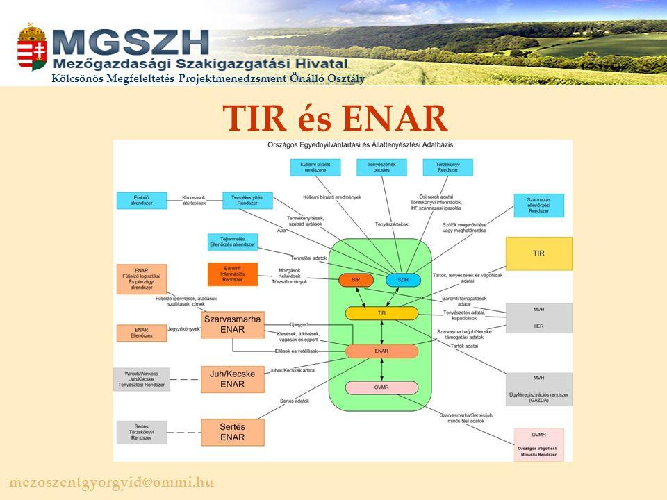 mezoszentgyorgyid@ommi.hu Kölcsönös Megfeleltetés Projektmenedzsment Önálló Osztály TIR és ENAR