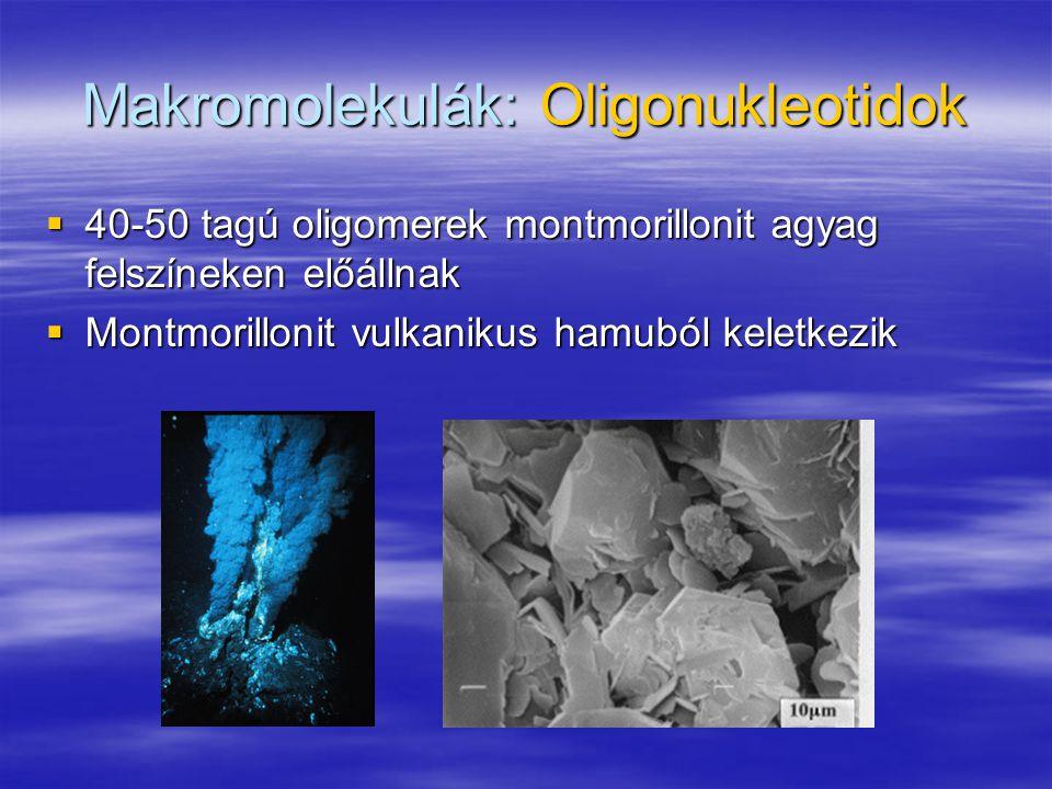 Makromolekulák: Oligonukleotidok  40-50 tagú oligomerek montmorillonit agyag felszíneken előállnak  Montmorillonit vulkanikus hamuból keletkezik