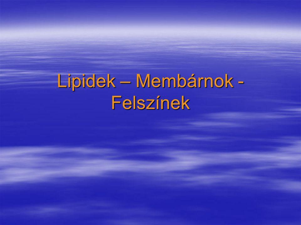 Lipidek – Membárnok - Felszínek