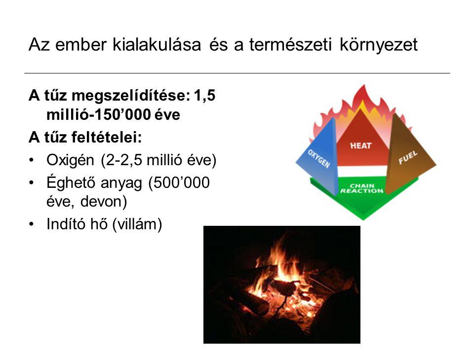 Az ember kialakulása és a természeti környezet A tűz megszelídítése: 1,5 millió-150'000 éve A tűz feltételei: Oxigén (2-2,5 millió éve) Éghető anyag (500'000 éve, devon) Indító hő (villám)