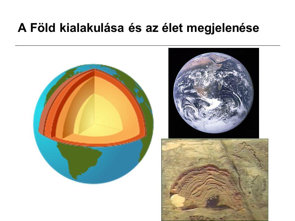 3,8 milliárd éve jelent meg az élet a föld felszíne alatt, illetve a tengervízben: kékbaktérumok (sztomatolit) 2-2,5 milliárd éve jelentek meg az első fotoszintézisre képes baktériumok 680 millió éve alakultak ki az első többsejtű szerveződések 580 millió éve jelentek meg az első páncélos és héjas állatok 450 millió éve jelentek meg a gerincesek 370 millió éve jelentek meg a kétéltűek, a szárazföld meghódítása 340 millió éve a hüllők tojásaikat a szárazföldön költik ki 200 millió éve jelentek meg az első emlősök, de csak 65 millió éve váltak fontos fajjá