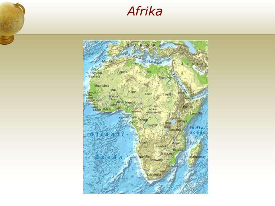 Élet Afrikában az oázisokban .