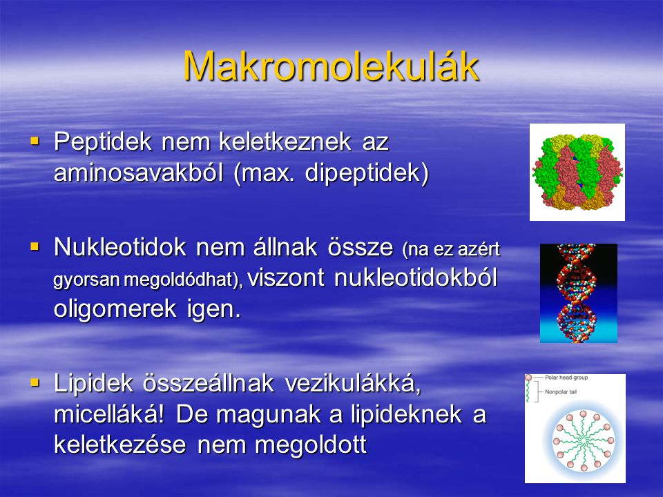 Makromolekulák  Peptidek nem keletkeznek az aminosavakból (max. dipeptidek)  Nukleotidok nem állnak össze (na ez azért gyorsan megoldódhat), viszont