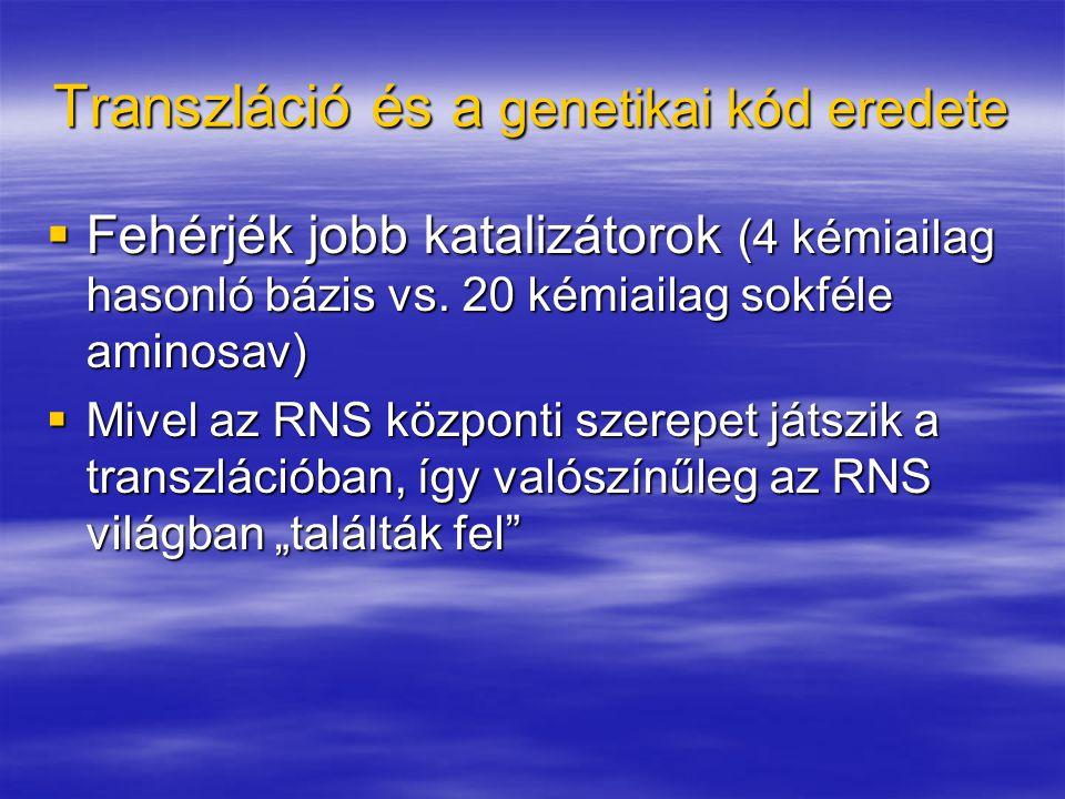 Transzláció és a genetikai kód eredete  Fehérjék jobb katalizátorok (4 kémiailag hasonló bázis vs. 20 kémiailag sokféle aminosav)  Mivel az RNS közp