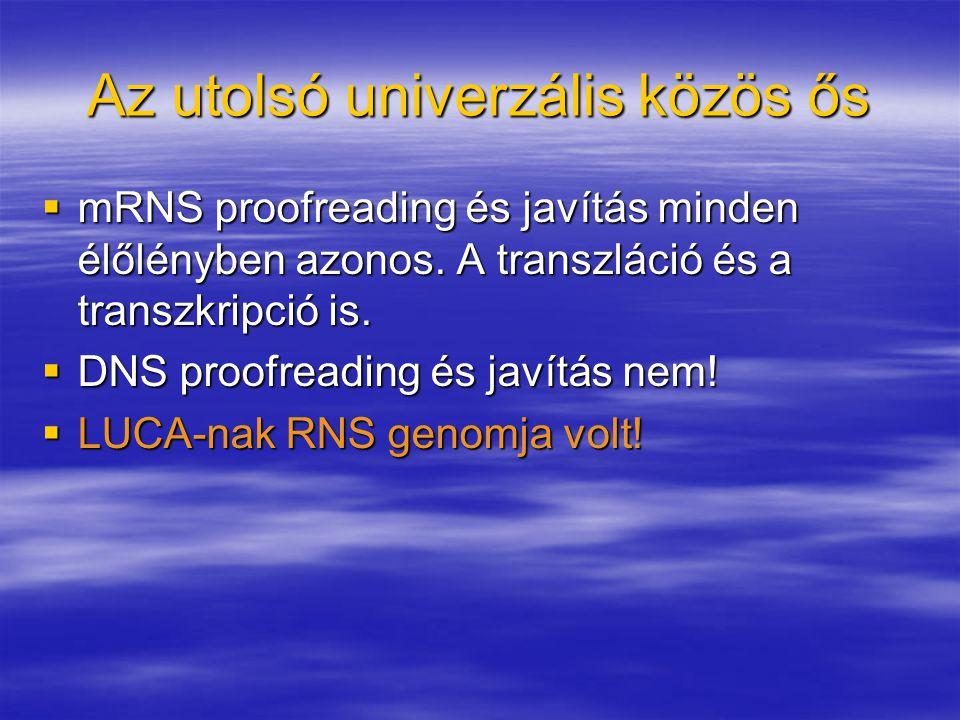 Az utolsó univerzális közös ős  mRNS proofreading és javítás minden élőlényben azonos. A transzláció és a transzkripció is.  DNS proofreading és jav