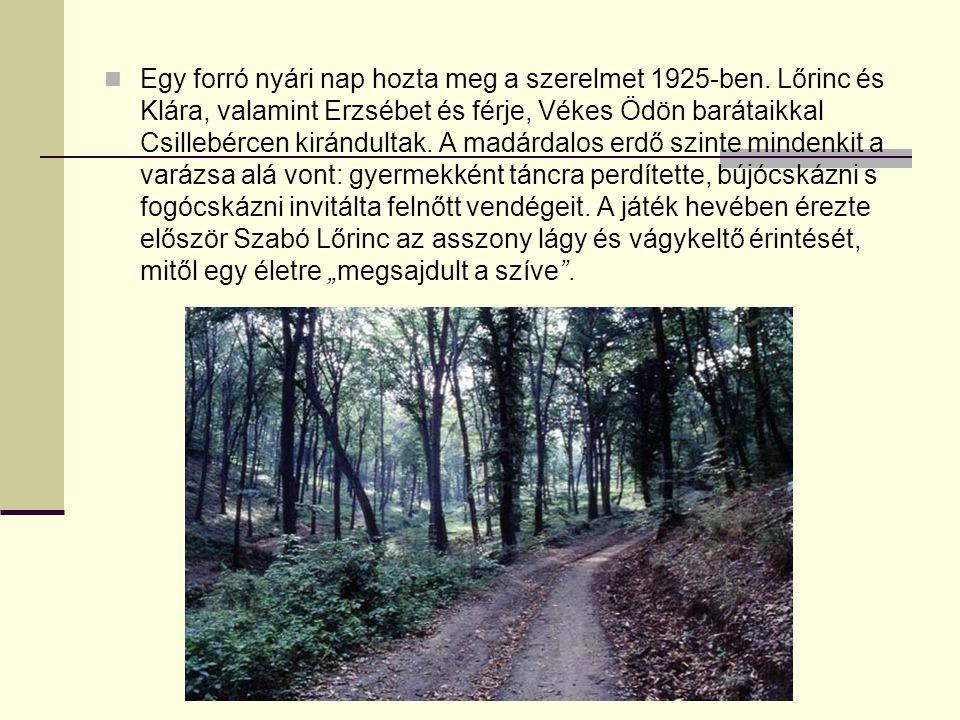 Egy forró nyári nap hozta meg a szerelmet 1925-ben. Lőrinc és Klára, valamint Erzsébet és férje, Vékes Ödön barátaikkal Csillebércen kirándultak. A ma
