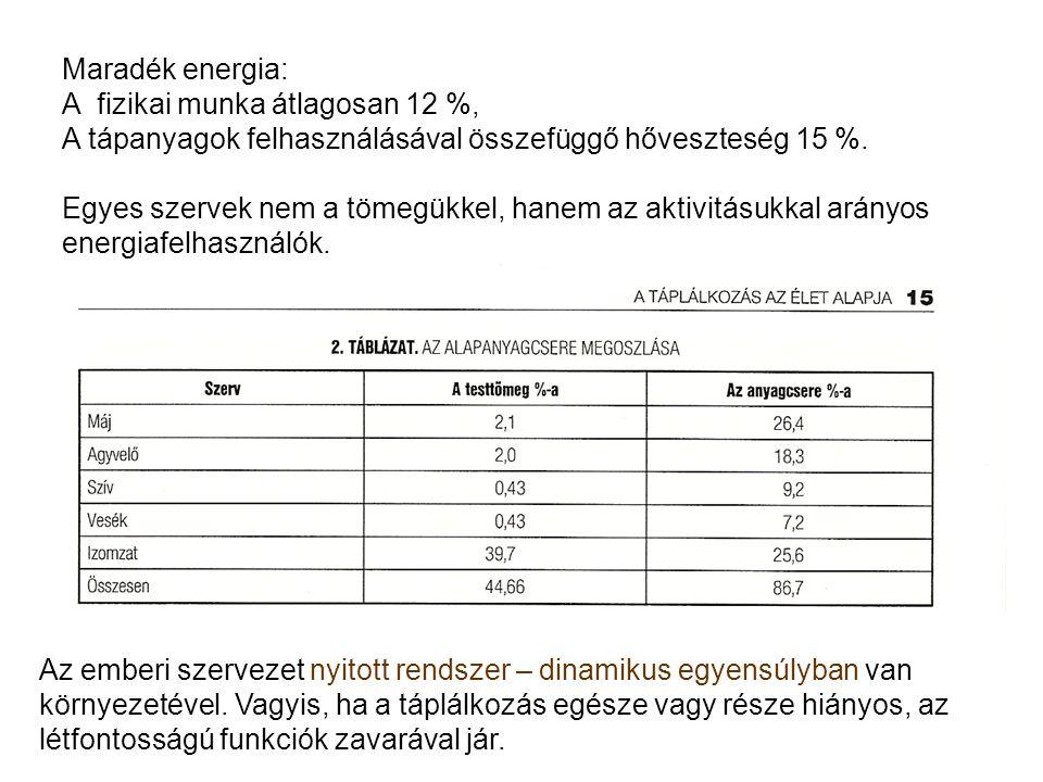 Maradék energia: A fizikai munka átlagosan 12 %, A tápanyagok felhasználásával összefüggő hőveszteség 15 %. Egyes szervek nem a tömegükkel, hanem az a