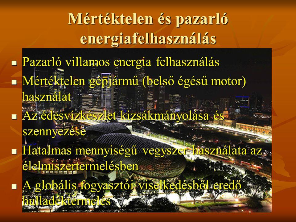 Mértéktelen és pazarló energiafelhasználás Pazarló villamos energia felhasználás Pazarló villamos energia felhasználás Mértéktelen gépjármű (belső égésű motor) használat Mértéktelen gépjármű (belső égésű motor) használat Az édesvízkészlet kizsákmányolása és szennyezése Az édesvízkészlet kizsákmányolása és szennyezése Hatalmas mennyiségű vegyszer használata az élelmiszertermelésben Hatalmas mennyiségű vegyszer használata az élelmiszertermelésben A globális fogyasztói viselkedésből eredő hulladéktermelés A globális fogyasztói viselkedésből eredő hulladéktermelés