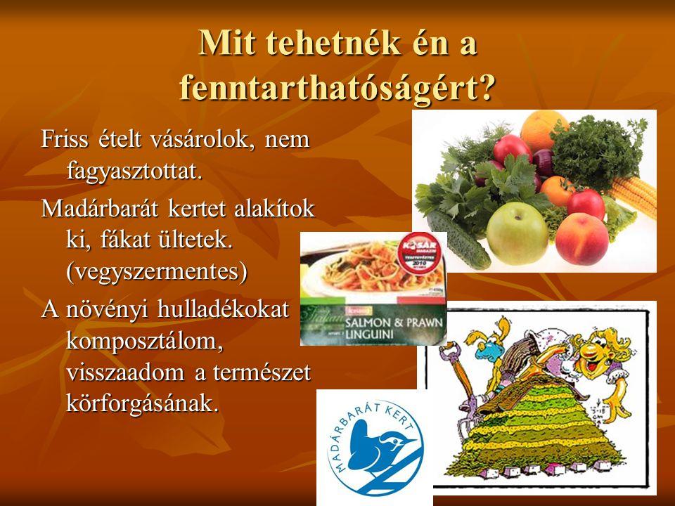 Mit tehetnék én a fenntarthatóságért? Friss ételt vásárolok, nem fagyasztottat. Madárbarát kertet alakítok ki, fákat ültetek. (vegyszermentes) A növén