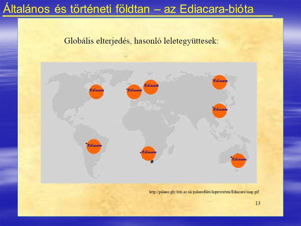 Általános és történeti földtan – az Ediacara-bióta Ediacara