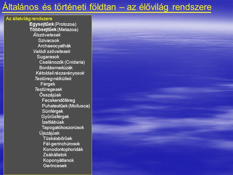 Általános és történeti földtan – az élővilág rendszere Az állatvilág rendszere Egysejtűek (Protozoa) Többsejtűek (Metazoa) Álszövetesek Szivacsok Archaeocyathák Valódi szövetesek Sugarasok Csalánozók (Cnidaria) Bordásmedúzák Kétoldali részarányosok Testüreg nélküliek Férgek Testüregesek Ősszájúak Fecskendőféreg Puhatestűek (Mollusca) Sünférgek Gyűrűsférgek Ízeltlábúak Tapogatókoszorúsok Újszájúak Tüskésbőrűek Fél-gerinchúrosok Konodontophoridák Zsákállatok Koponyátlanok Gerincesek