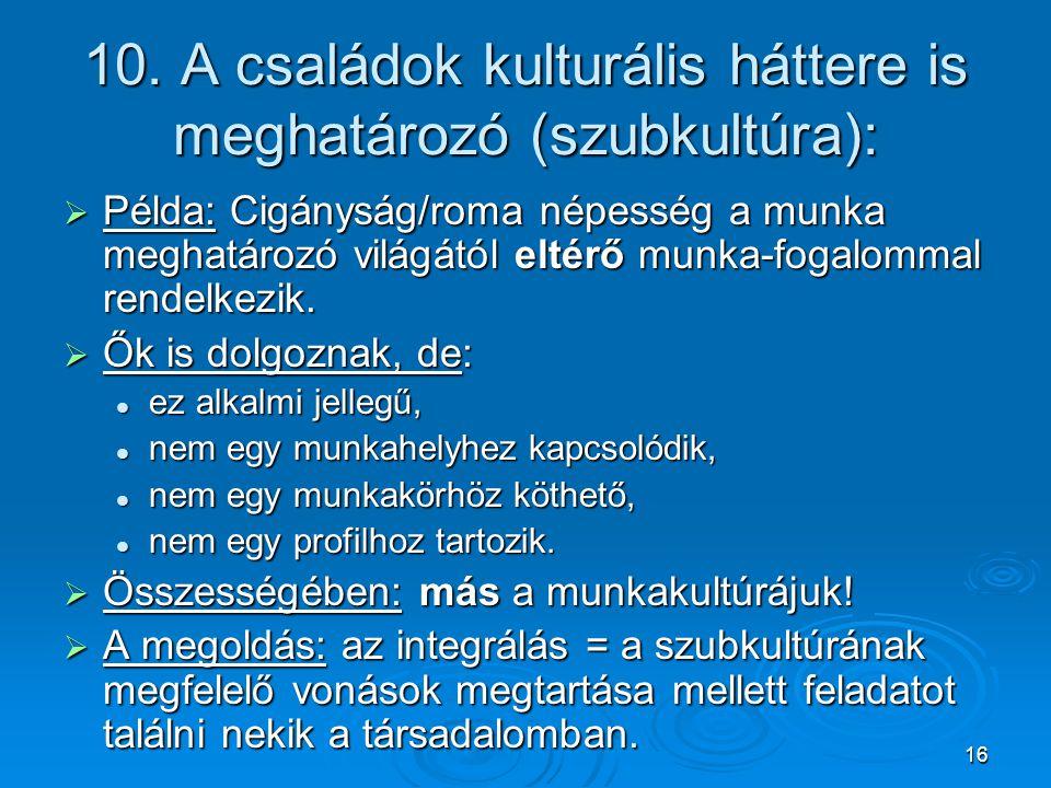 16 10. A családok kulturális háttere is meghatározó (szubkultúra):  Példa: Cigányság/roma népesség a munka meghatározó világától eltérő munka-fogalom