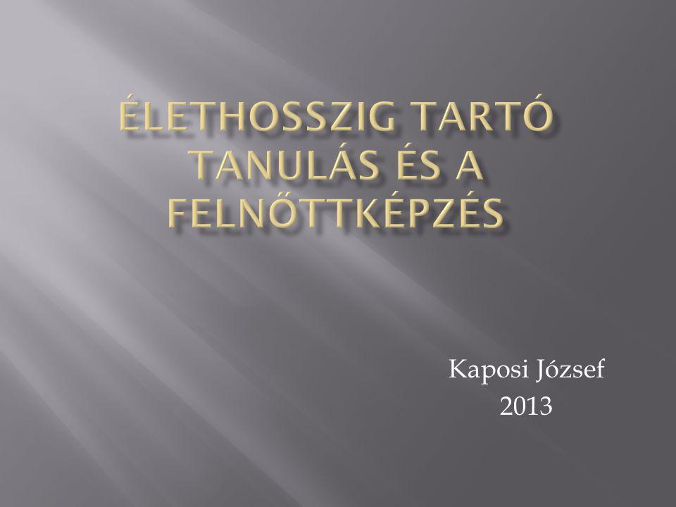 Kaposi József 2013