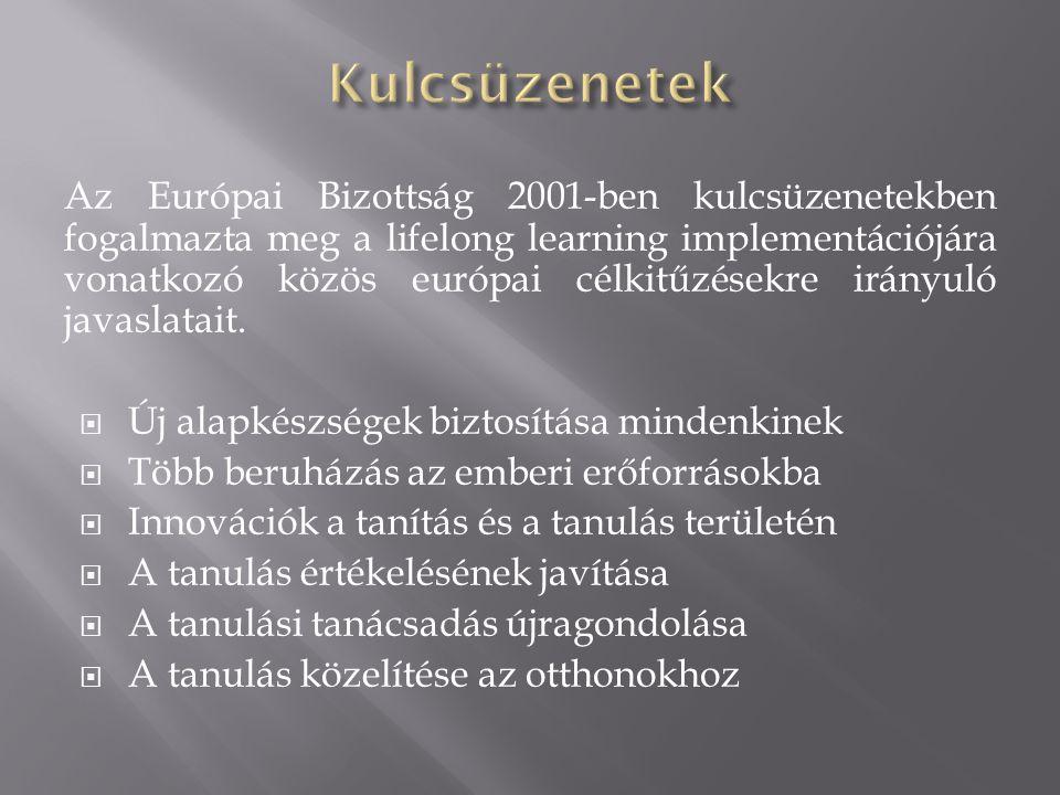 Az Európai Bizottság 2001-ben kulcsüzenetekben fogalmazta meg a lifelong learning implementációjára vonatkozó közös európai célkitűzésekre irányuló javaslatait.