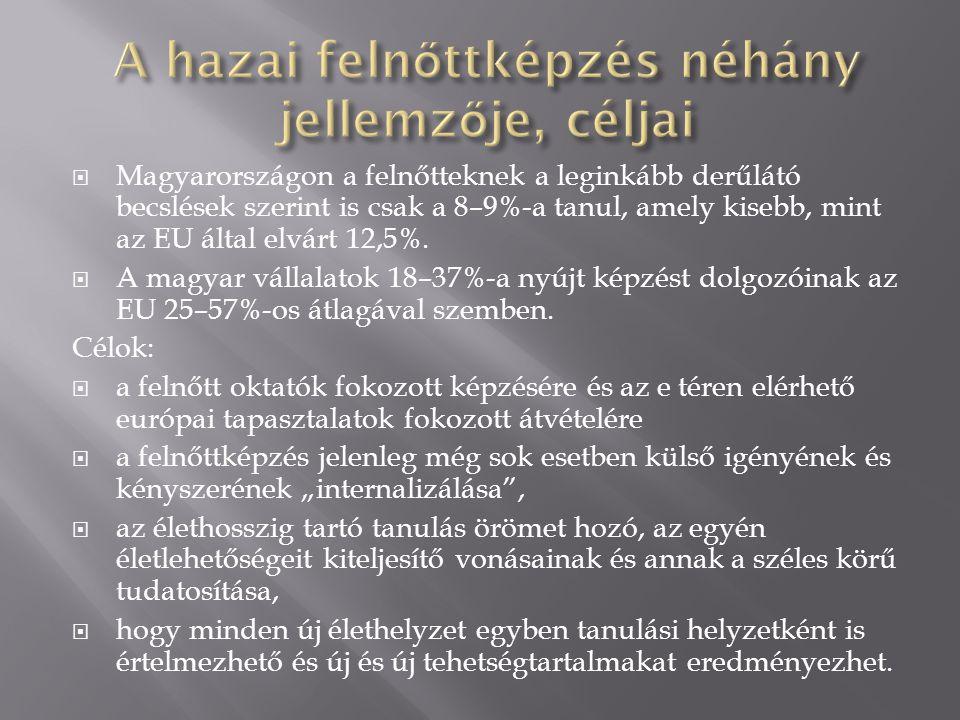  Magyarországon a felnőtteknek a leginkább derűlátó becslések szerint is csak a 8–9%-a tanul, amely kisebb, mint az EU által elvárt 12,5%.