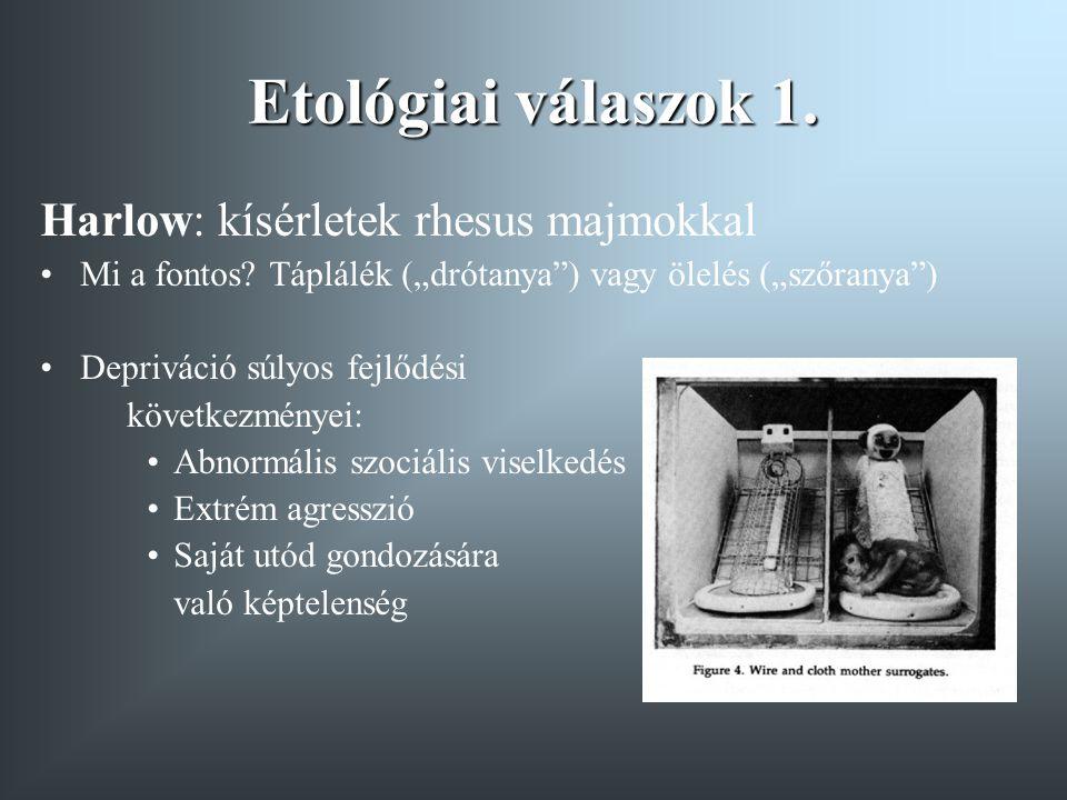 """Etológiai válaszok 1. Harlow: kísérletek rhesus majmokkal Mi a fontos? Táplálék (""""drótanya"""") vagy ölelés (""""szőranya"""") Depriváció súlyos fejlődési köve"""
