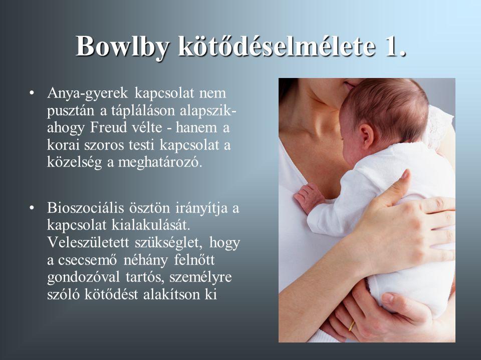 Bowlby kötődéselmélete 1. Anya-gyerek kapcsolat nem pusztán a tápláláson alapszik- ahogy Freud vélte - hanem a korai szoros testi kapcsolat a közelség