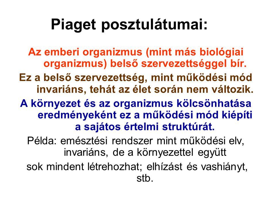 Piaget posztulátumai: Az emberi organizmus (mint más biológiai organizmus) belső szervezettséggel bír. Ez a belső szervezettség, mint működési mód inv