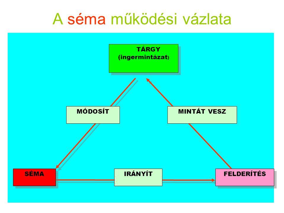 A séma működési vázlata SÉMA TÁRGY (ingermintázat ) TÁRGY (ingermintázat ) IRÁNYÍT MINTÁT VESZMÓDOSÍT FELDERÍTÉS