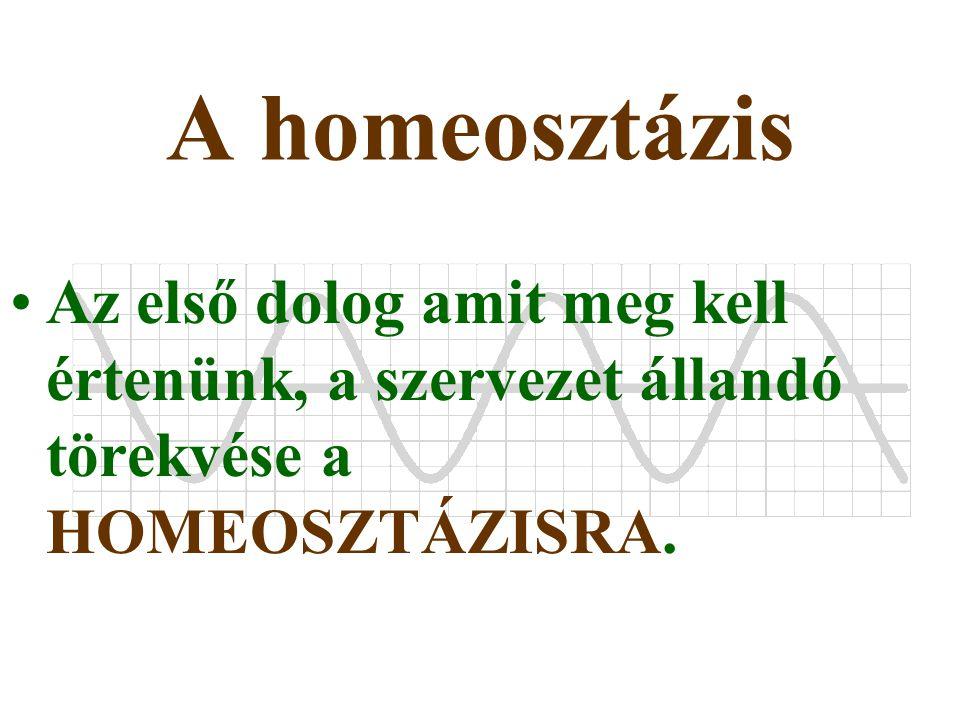 A homeosztázis Az első dolog amit meg kell értenünk, a szervezet állandó törekvése a HOMEOSZTÁZISRA.