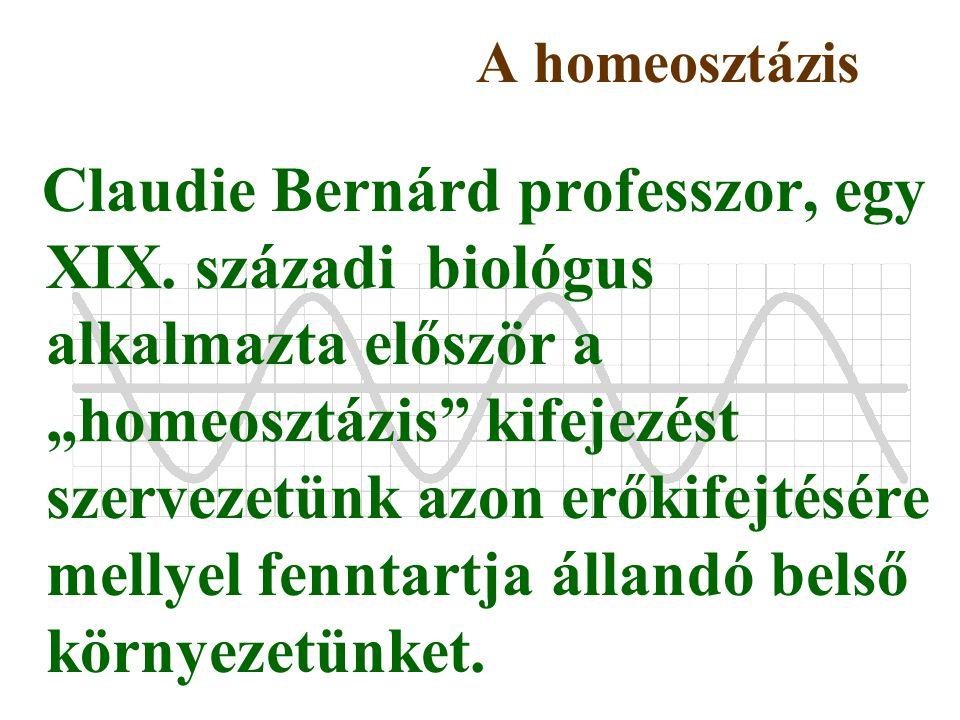 """A homeosztázis Claudie Bernárd professzor, egy XIX. századi biológus alkalmazta először a """"homeosztázis"""" kifejezést szervezetünk azon erőkifejtésére m"""