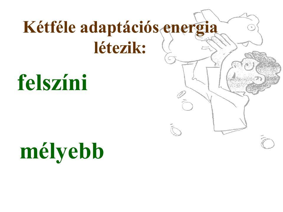 Kétféle adaptációs energia létezik: felszíni mélyebb