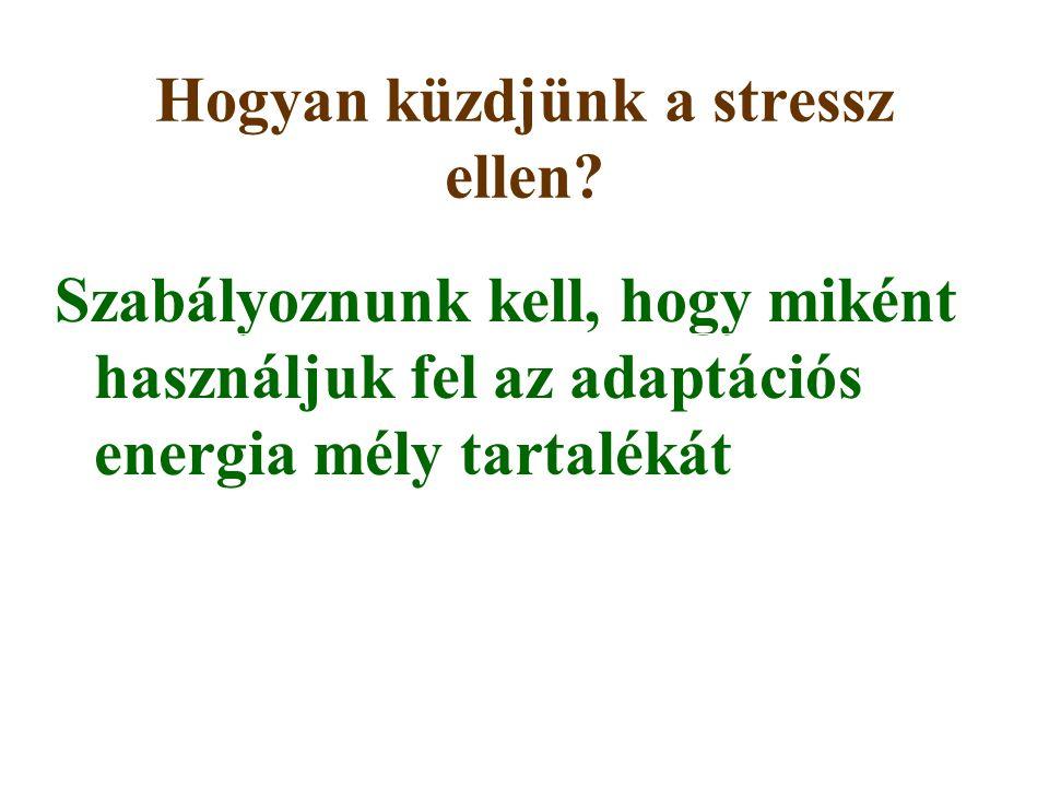 Hogyan küzdjünk a stressz ellen? Szabályoznunk kell, hogy miként használjuk fel az adaptációs energia mély tartalékát