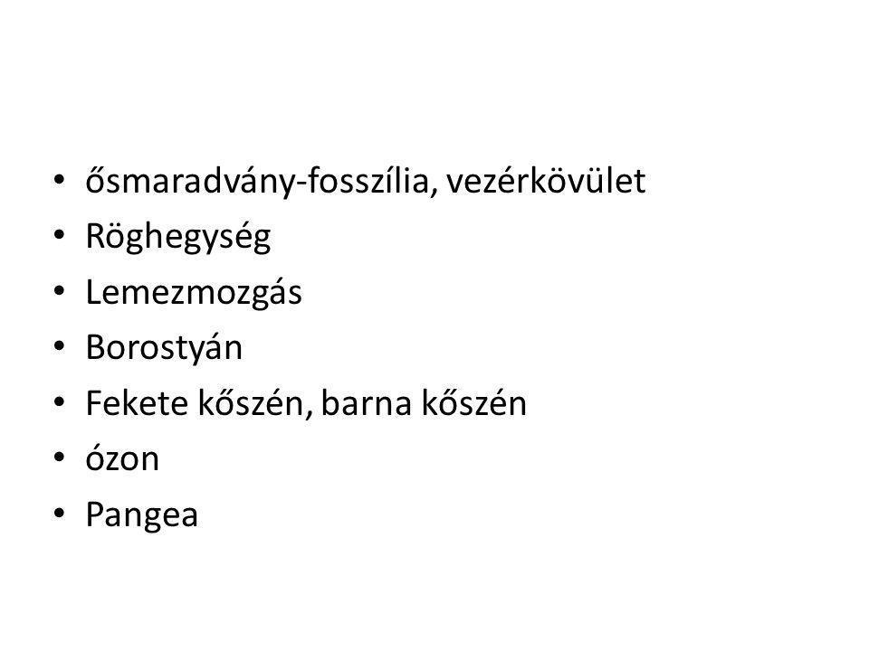 ősmaradvány-fosszília, vezérkövület Röghegység Lemezmozgás Borostyán Fekete kőszén, barna kőszén ózon Pangea