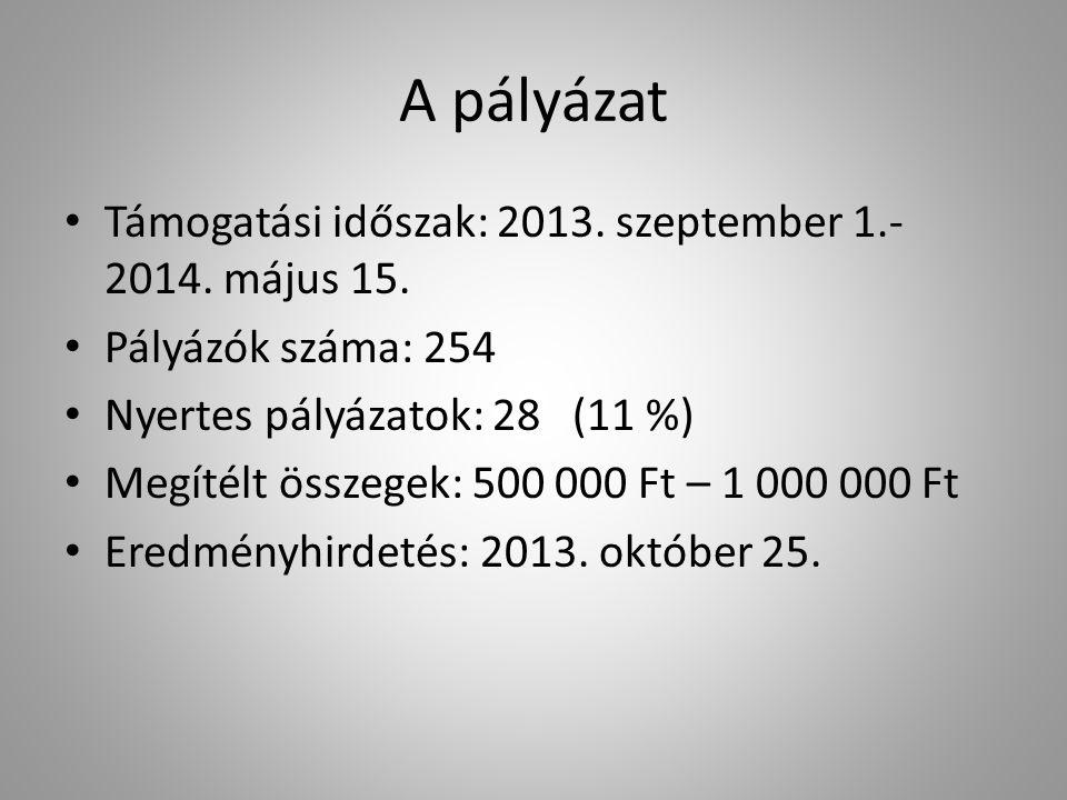 A pályázat Támogatási időszak: 2013. szeptember 1.- 2014. május 15. Pályázók száma: 254 Nyertes pályázatok: 28 (11 %) Megítélt összegek: 500 000 Ft –