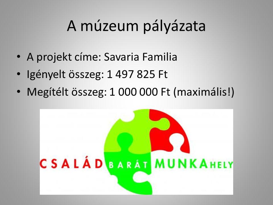 A múzeum pályázata A projekt címe: Savaria Familia Igényelt összeg: 1 497 825 Ft Megítélt összeg: 1 000 000 Ft (maximális!)