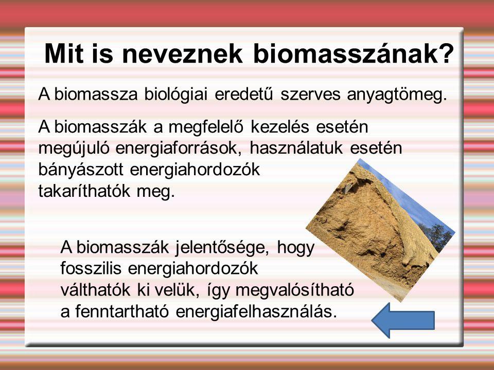 Mit is neveznek biomasszának.A biomassza biológiai eredetű szerves anyagtömeg.