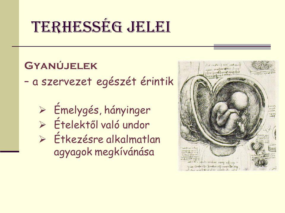 Terhesség jelei nem diagnosztikusak Valószín ű ségi jelek – nem diagnosztikusak (Nemi szervek elváltozásai hormonális hatásra)  Havi vérzés elmaradása  Genitáliák bővérűsége  Hüvely lividitása  A portio felpuhulása  A méh megnagyobbodása, konzisztencia változása  A méh helyzet- és méretváltozása  Méhnyálkahártya deciduális átalakulása