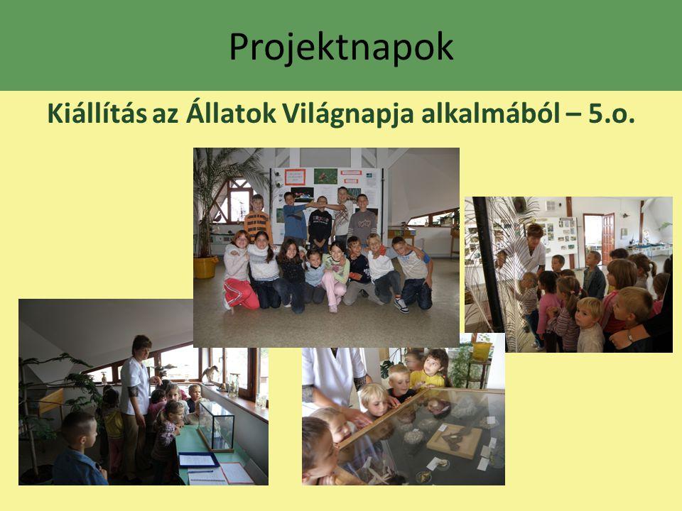 Projektnapok Kiállítás az Állatok Világnapja alkalmából – 5.o.