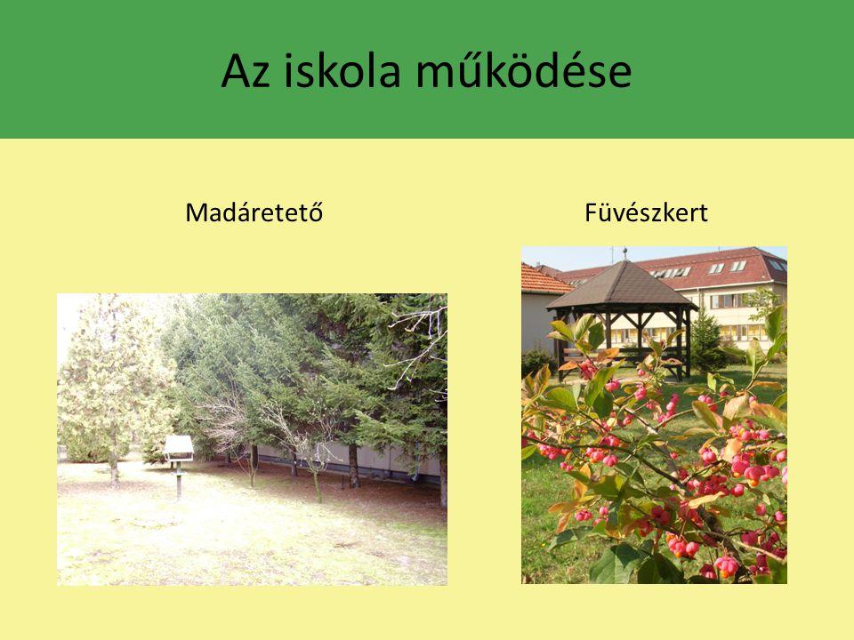 Rendhagyó órák Testnevelés óra – CSÚSZIKI 4.o.Magyar irodalom óra a Községi Könyvtárban, 2.o.