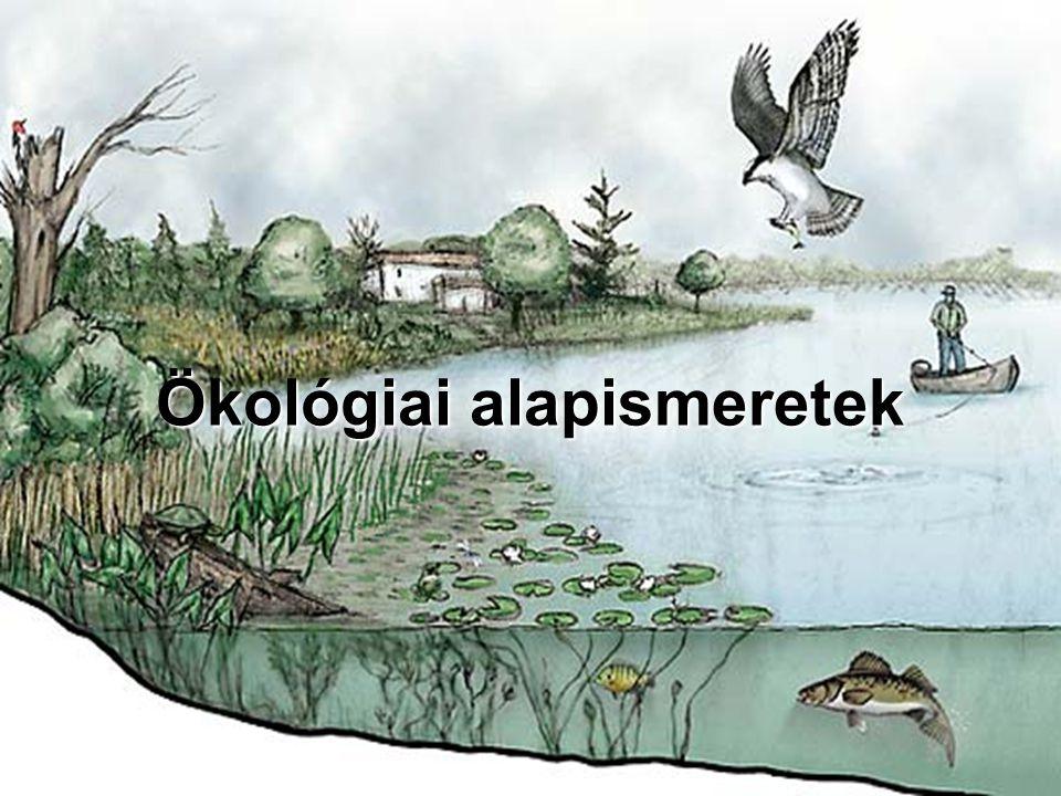 Ökológiai alapismeretek