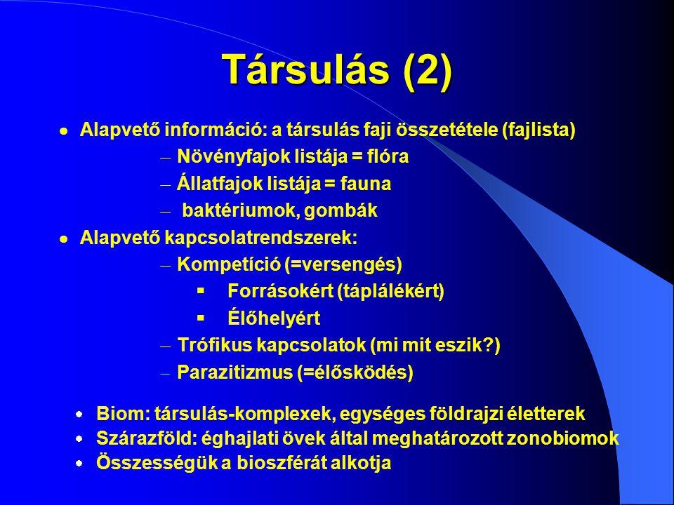 Társulás (2)  Alapvető információ: a társulás faji összetétele (fajlista)  Növényfajok listája = flóra  Állatfajok listája = fauna  baktériumok, g