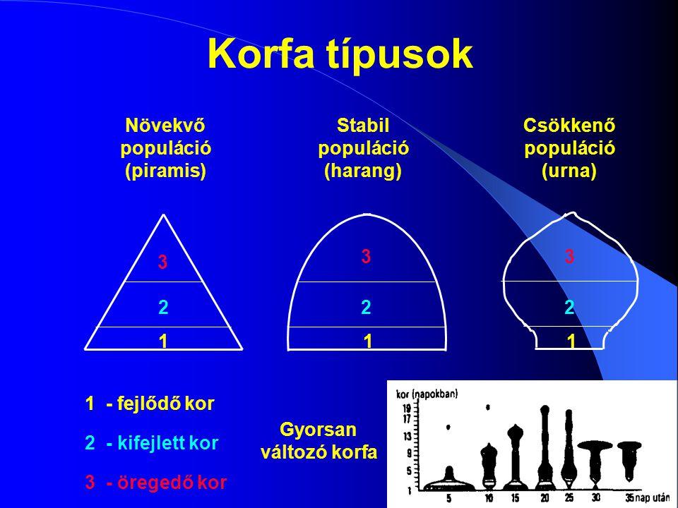 Növekvő populáció (piramis) Stabil populáció (harang) Csökkenő populáció (urna) 1 1 1 1 - fejlődő kor 222 2 - kifejlett kor 3 33 3 - öregedő kor Korfa
