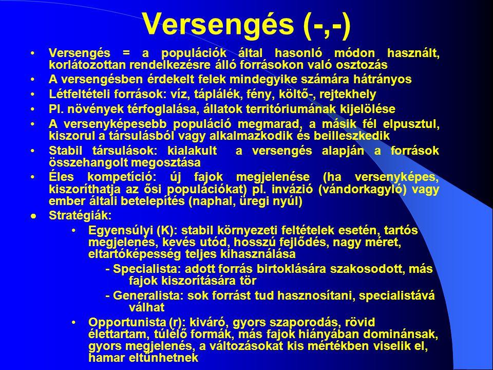 Versengés (-,-) Versengés = a populációk által hasonló módon használt, korlátozottan rendelkezésre álló forrásokon való osztozás A versengésben érdeke