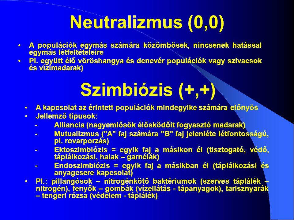 Neutralizmus (0,0) A populációk egymás számára közömbösek, nincsenek hatással egymás létfeltételeire Pl. együtt élő vöröshangya és denevér populációk