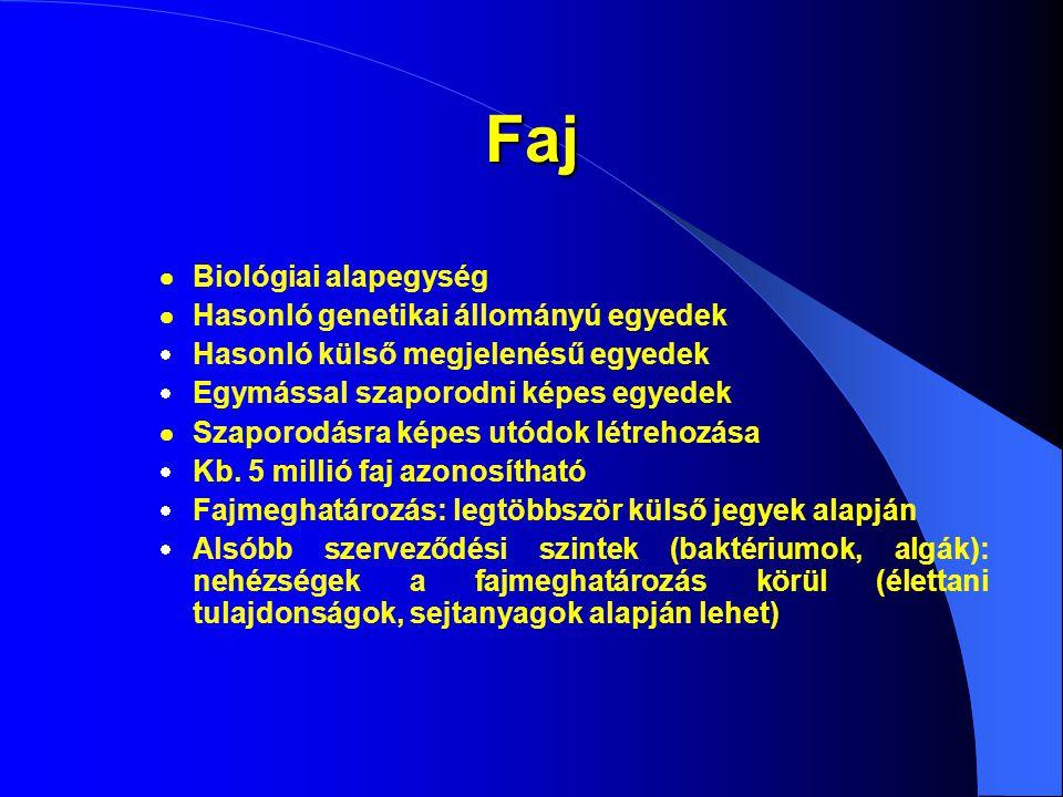 Faj  Biológiai alapegység  Hasonló genetikai állományú egyedek  Hasonló külső megjelenésű egyedek  Egymással szaporodni képes egyedek  Szaporodás