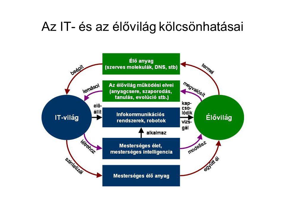 Elmekutatás és IT: –trináris számítások - míg a számítógépek a zérók és egyesek bináris rendszerében kezelik az információt, –az idegsejtek hármas (trináris) kódokban (zérókban, egyekben és mínusz egyekben) kommunikálják elektronikus jelzéseiket.