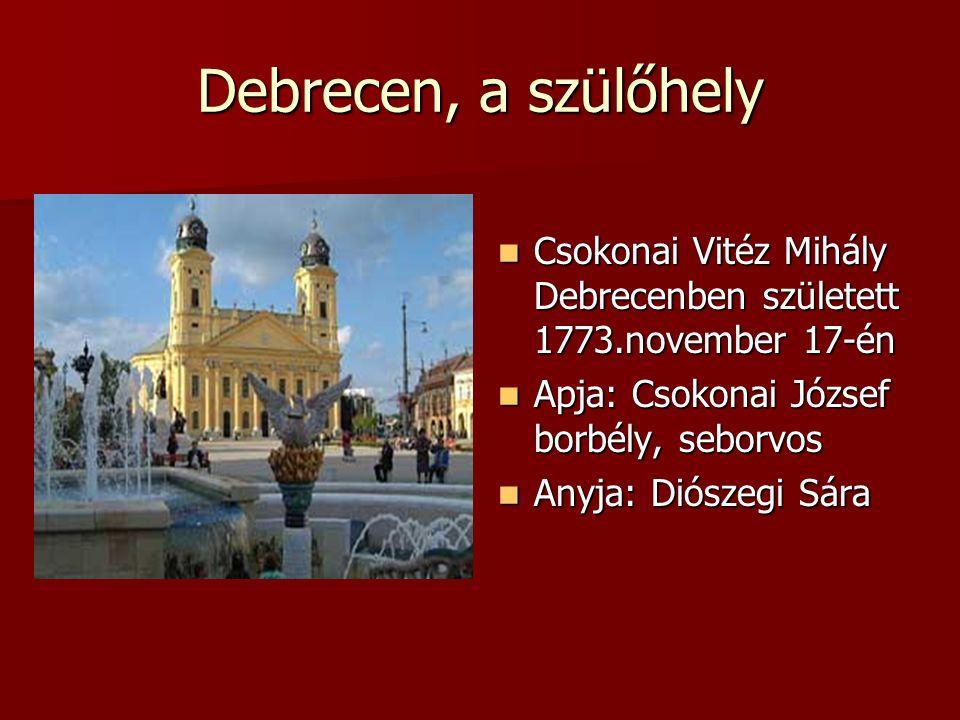 Debrecen, a szülőhely Csokonai Vitéz Mihály Debrecenben született 1773.november 17-én Csokonai Vitéz Mihály Debrecenben született 1773.november 17-én Apja: Csokonai József borbély, seborvos Apja: Csokonai József borbély, seborvos Anyja: Diószegi Sára Anyja: Diószegi Sára