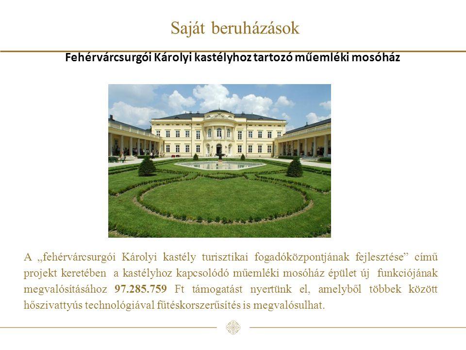 """Saját beruházások Fehérvárcsurgói Károlyi kastélyhoz tartozó műemléki mosóház A """"fehérvárcsurgói Károlyi kastély turisztikai fogadóközpontjának fejlesztése című projekt keretében a kastélyhoz kapcsolódó műemléki mosóház épület új funkciójának megvalósításához 97.285.759 Ft támogatást nyertünk el, amelyből többek között hőszivattyús technológiával fűtéskorszerűsítés is megvalósulhat."""