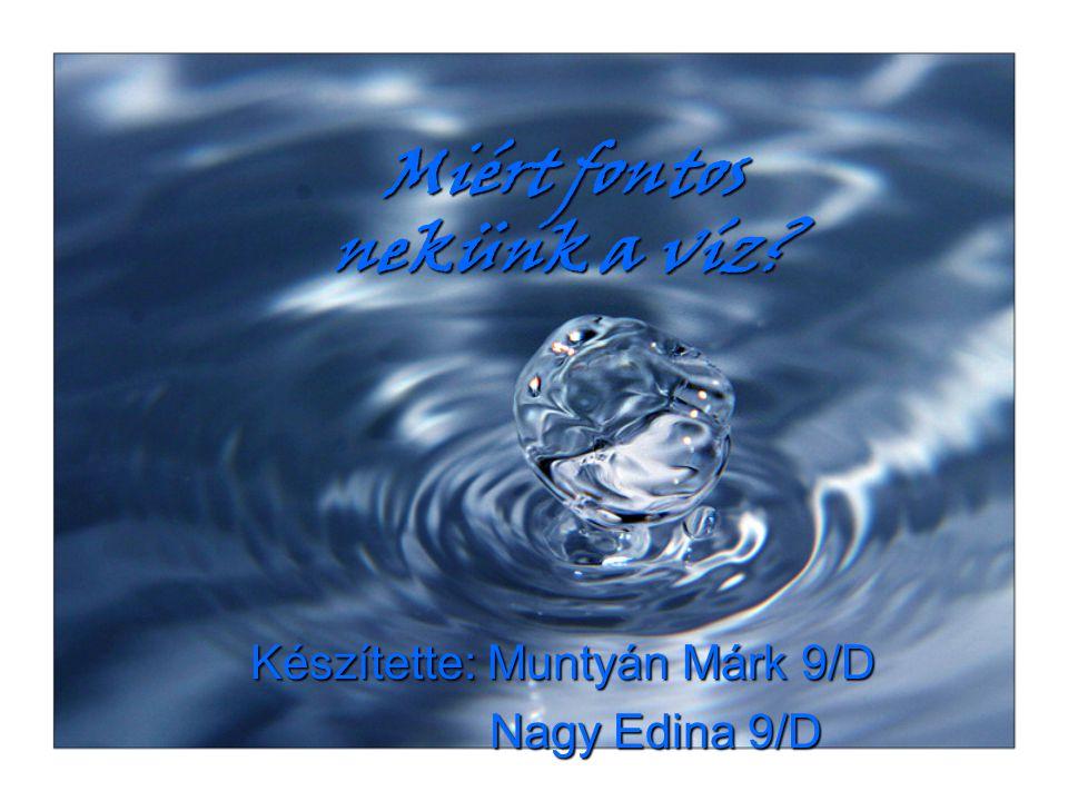 Miért fontos nekünk a víz? Készítette: Muntyán Márk 9/D Nagy Edina 9/D Nagy Edina 9/D
