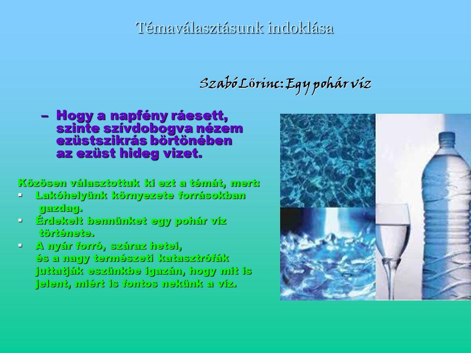 Témaválasztásunk indoklása Szabó L ő rinc: Egy pohár víz Szabó L ő rinc: Egy pohár víz –Hogy a napfény ráesett, szinte szívdobogva nézem ezüstszikrás